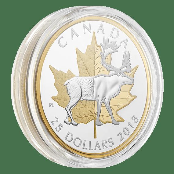timeless coin