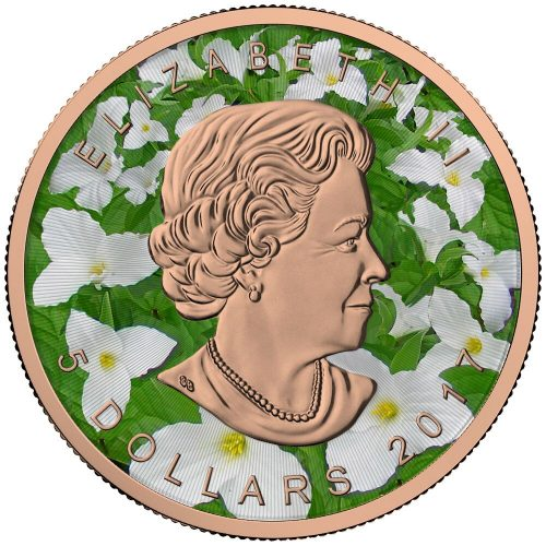 **FREE SHIPPING** MAPLE LEAF - SEASONS - SUMMER - 2016 Canadian 1 oz Pure Silver Coin - Color and Pink Gold